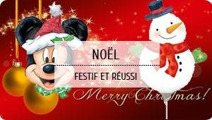 noel2 300x170 - Magasin Fêtes